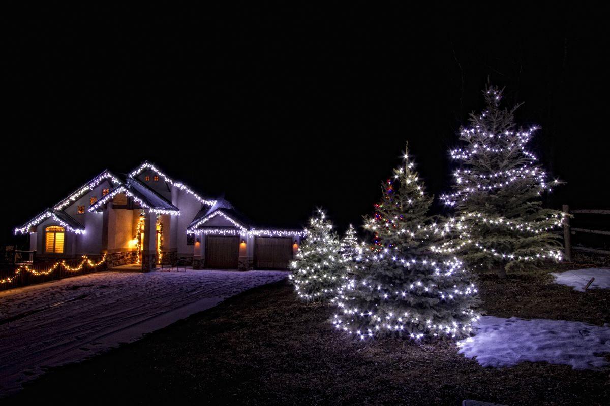 Enercept Christmas House